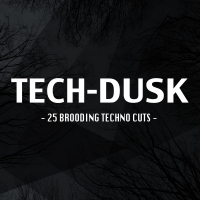 Tech-Dusk: 25 Brooding Techno Cuts
