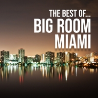 The Best Of... Big Room Miami