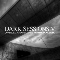 Dark Sessions V (Mixed by Peter Plaznik)