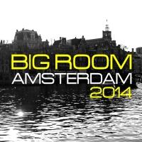 Big Room Amsterdam 2014